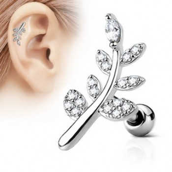 CZ Leaf Tragus Cartilage