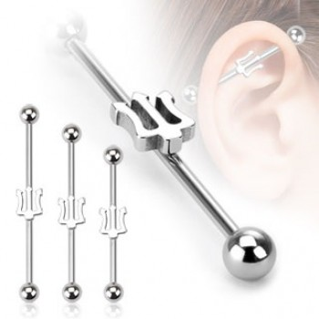 Trident Industrial Barbell