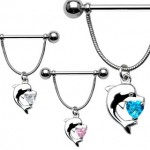 Gem Dolphin Heart Dangle